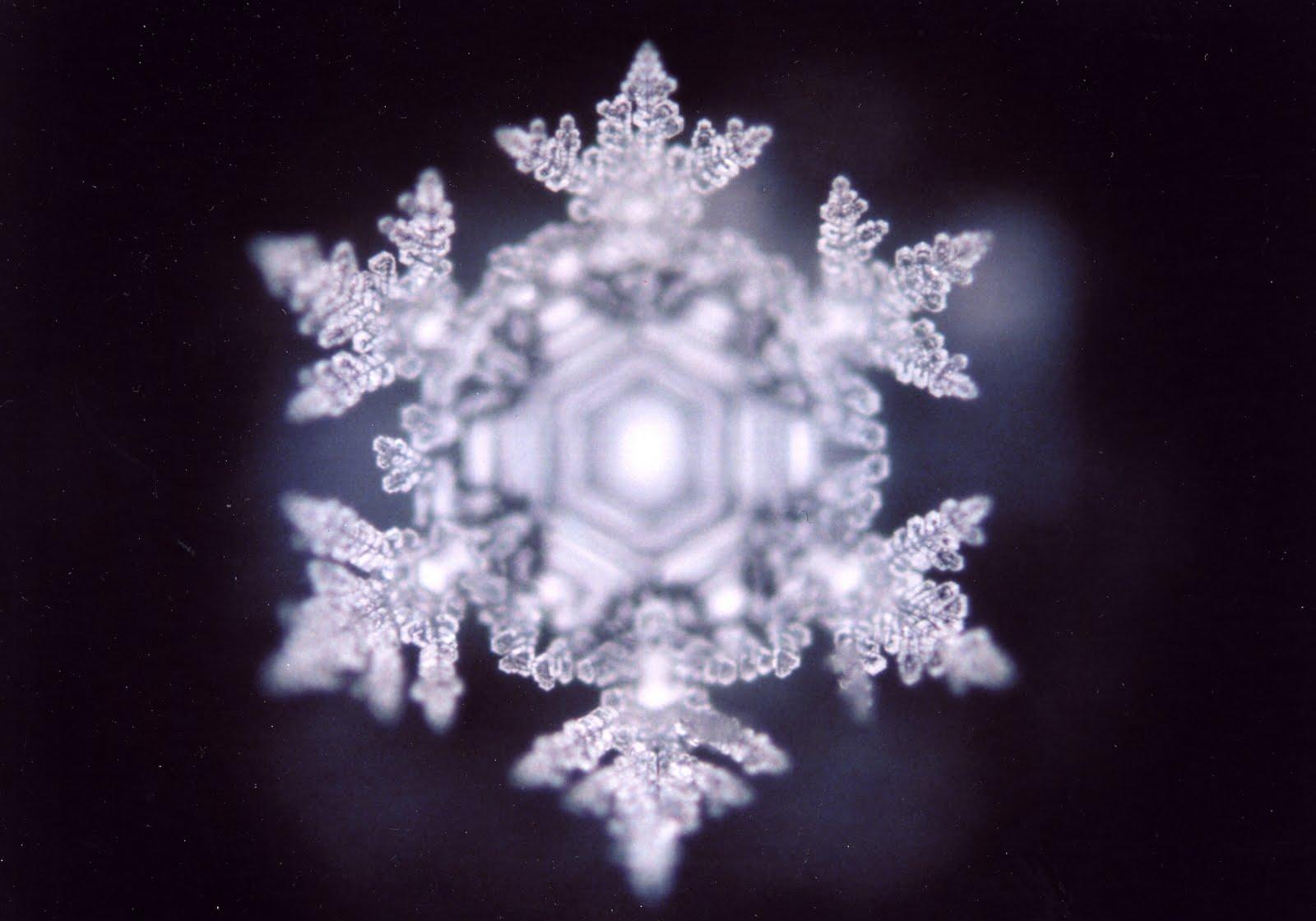 сделать масару эмото фото кристаллов воды сформировать красивые, устойчивые