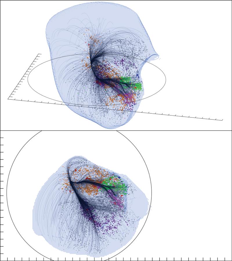Duas visões do Superaglomerado Laniakea. A superfície externa mostra a região dominada pela gravidade de Laniakea. As linhas de corrente mostradas em traço preto são os caminhos pelos quais as galáxias fluem à medida que são puxadas para mais perto dentro do superaglomerado. Cores das galáxias individuais distinguem principalmente pelos componentes dentro do Superaglomerado Laniakea. Crédito: SDVision Interactive Visualization Software por DP do CEA/Saclay, França.