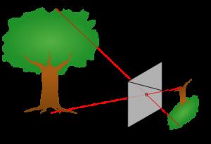 O funcionamento básico da câmera escura.
