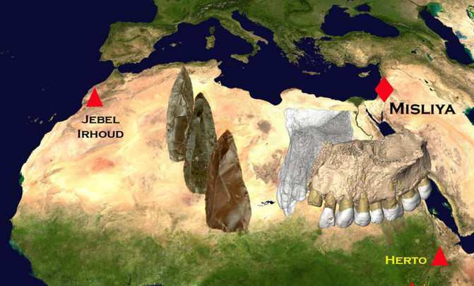 Localização das ferramentas e fósseis encontrados em Misliya (200,000-175,000 anos) e Jebel Irhoud (315,000 anos). [Créditos: Rolf Quam/Universidade Binghamton]